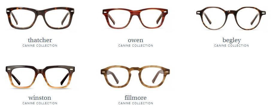 eyeglass01