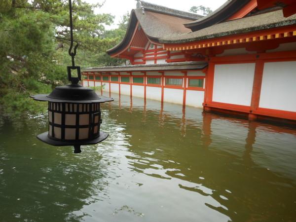 itsukushima (57)
