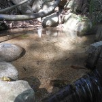 【秘境・来栖渓谷】大窪寺へ繋がる遍路道の清涼感がハンパナイ!(動画+画像アリ)