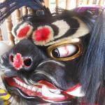 【伝統文化・獅子舞動画】我が地区の獅子は「女の子」!?【香川県木田郡三木町・まんで願】