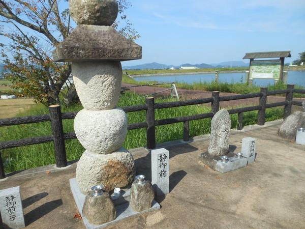 shishimai (77)