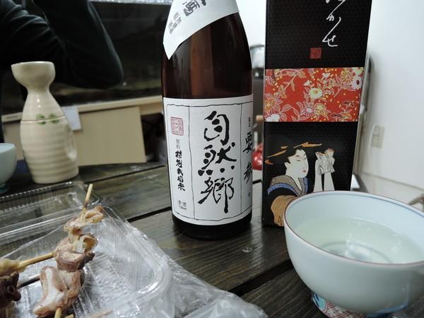 mishima (29)