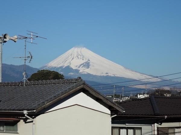 mishima (41)