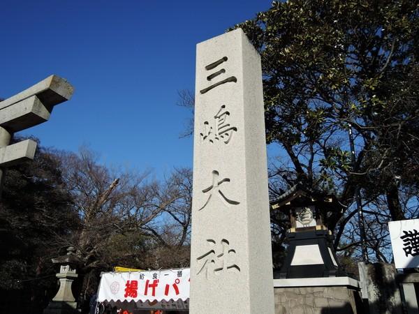 mishima (45)