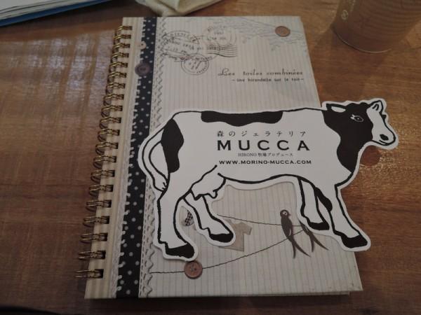 mucca (14)