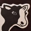 mucca (49)