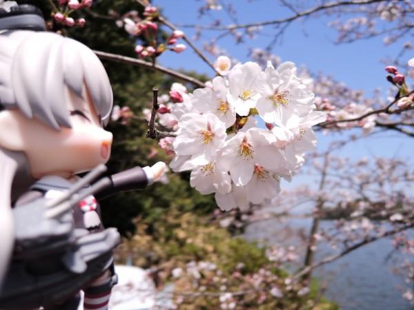 kikaku-kouen (75)
