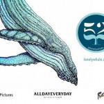 世界一孤独なクジラを探せ!一人ぼっちで歌い続ける『52』探査プロジェクト