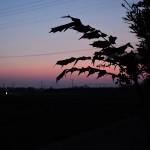 【地方創生の事例:三木町の百眼百考会議(ももかいぎ)】田舎化が進むベッドタウンの地方再生考察