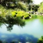 【香川県観光オススメ名所:栗林公園】日本三大庭園を越えた?ミシュラン3つ星公園で鯉遊び