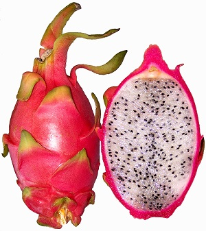 dragon-fruit-wiki